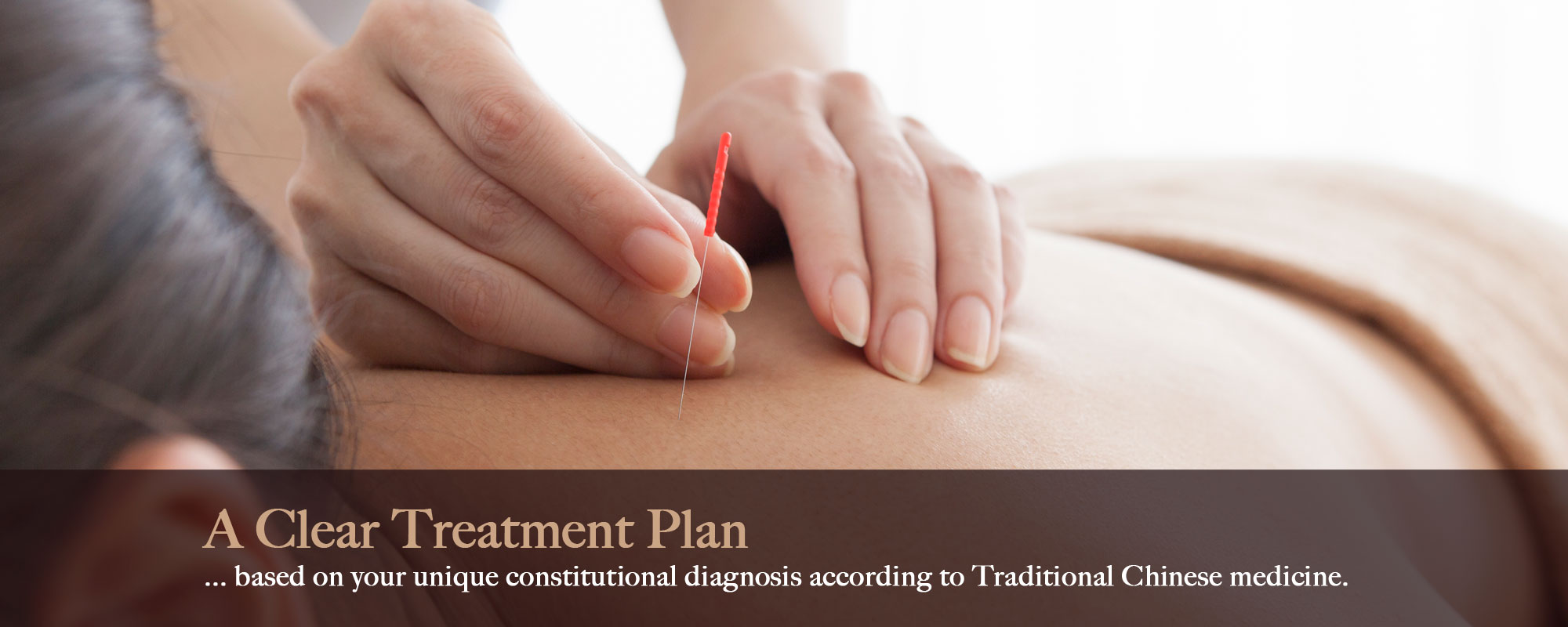 A Clear Treatment Plan ... Based On Your Unique Constitutional Diagnosis According To Traditional Chinese Medicine
